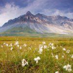 Regions of Alaska Where to go