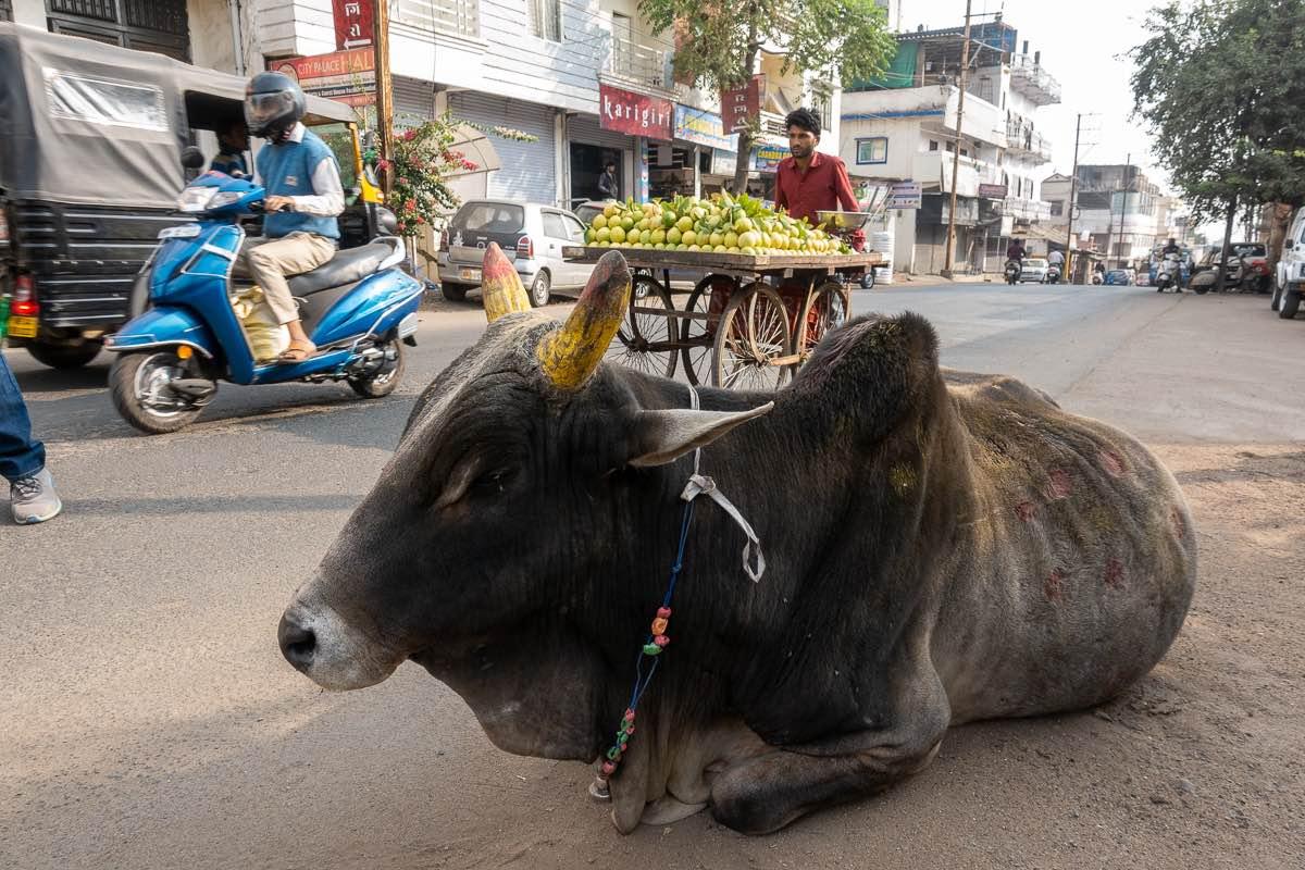 Bhopal India walking tour