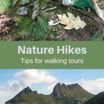 Walking tours nature hikes