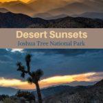 Desert sunset Joshua Tree photography