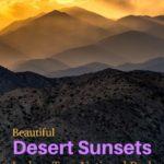 Desert Sunset landscape Joshua NP